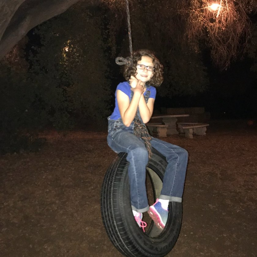 Scarlet Tire Swing